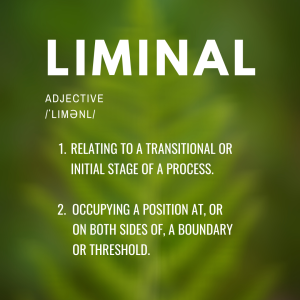 Liminal, adjective, relating to a transitional or initial stage of a process, or Occupying a position at or on both sides of a boundary or threshold.